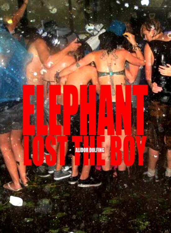 Elephant Lost The Boy, Alidor Dolfing